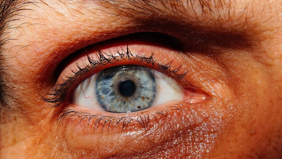 Estética ocular cirugía plástica de párpados