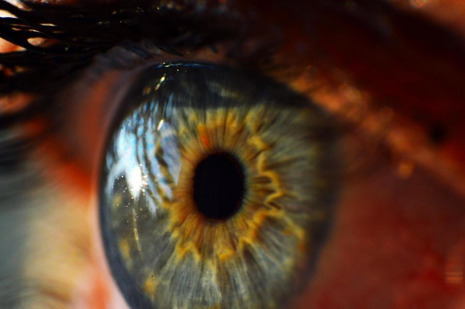 tomografia coherencia optica Prueba de tomografía de coherencia óptica