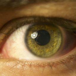 retinosis pigmentaria tipos