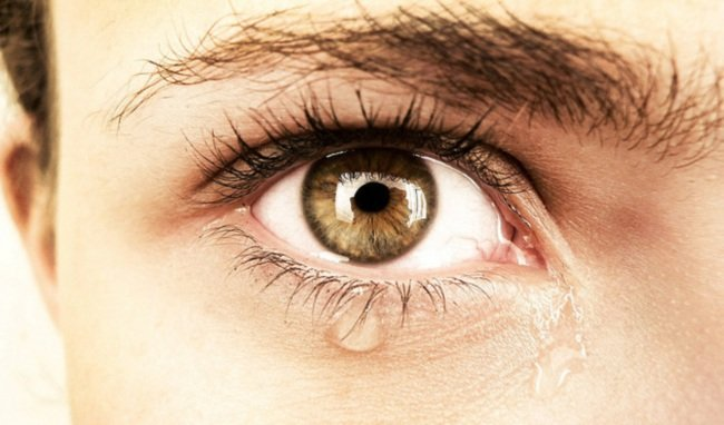 511 ojo lloroso Problemas de exceso de lagrimeo