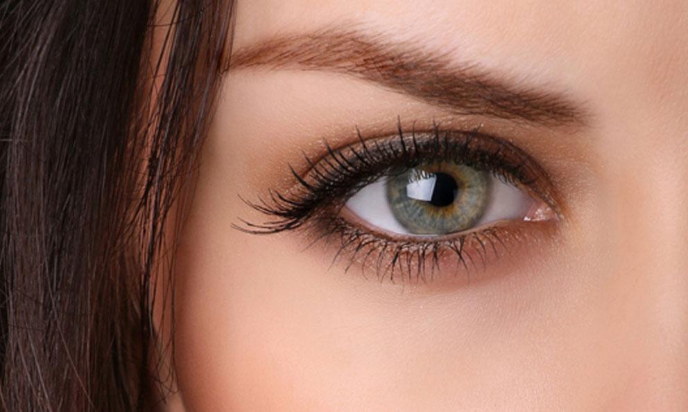 parpado Tumores en la zona ocular