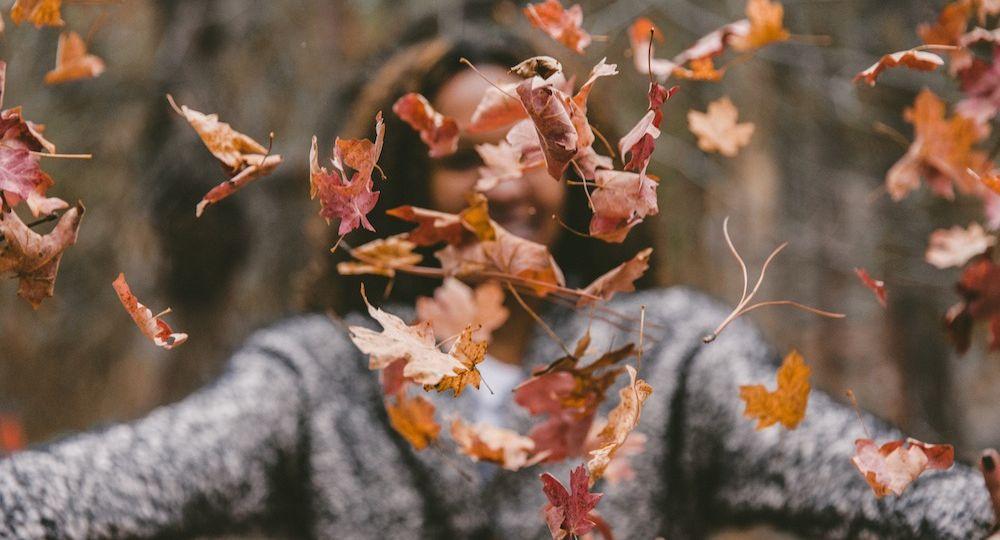 revisa tu vista en otoño